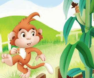 猴子掰玉米的故事