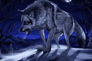 咬断后腿的狼