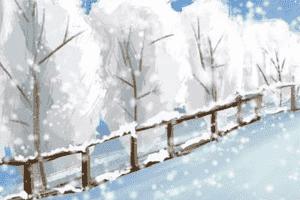雪花和害虫