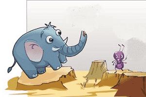 慢蚂蚁与站大象